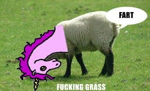 farting lamb